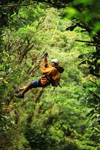 Zip wire through the jungle